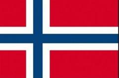 drapeau-norvege-15090-cm