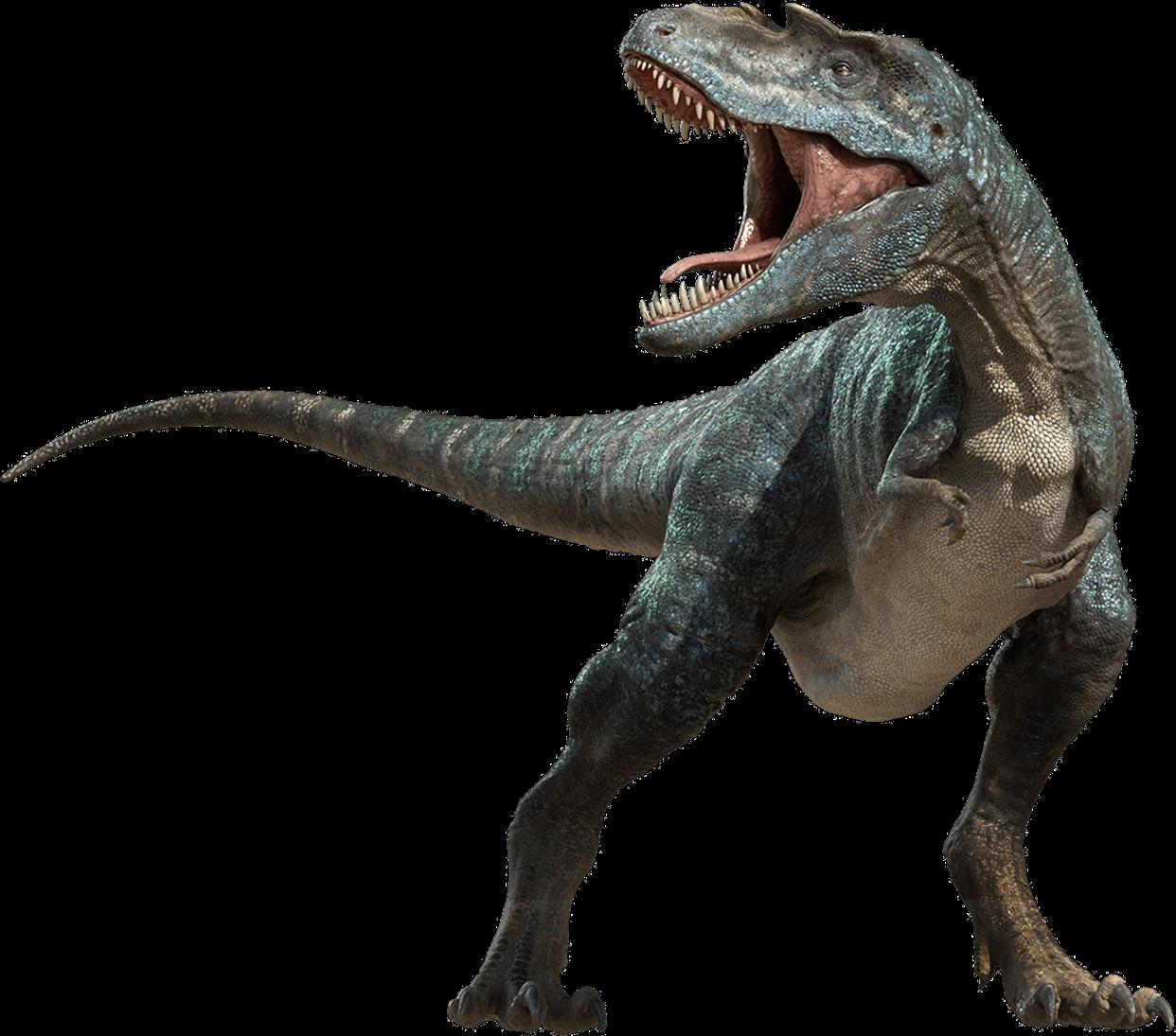 gorgosaurus dinosaure sang